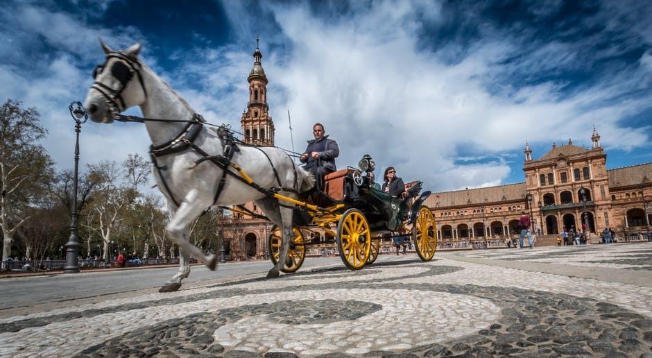 horse driving a cart