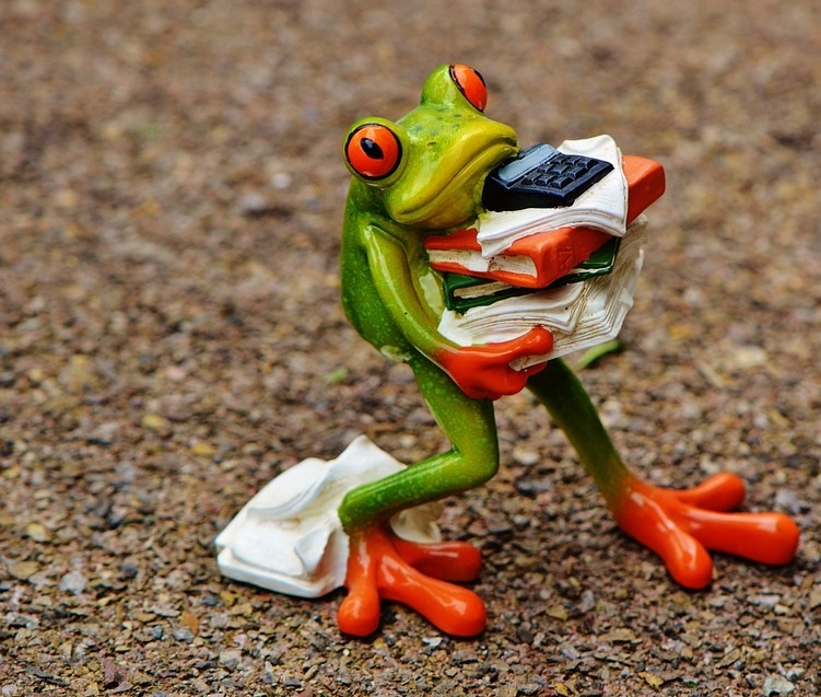 Do as this Grenouille (Frog)
