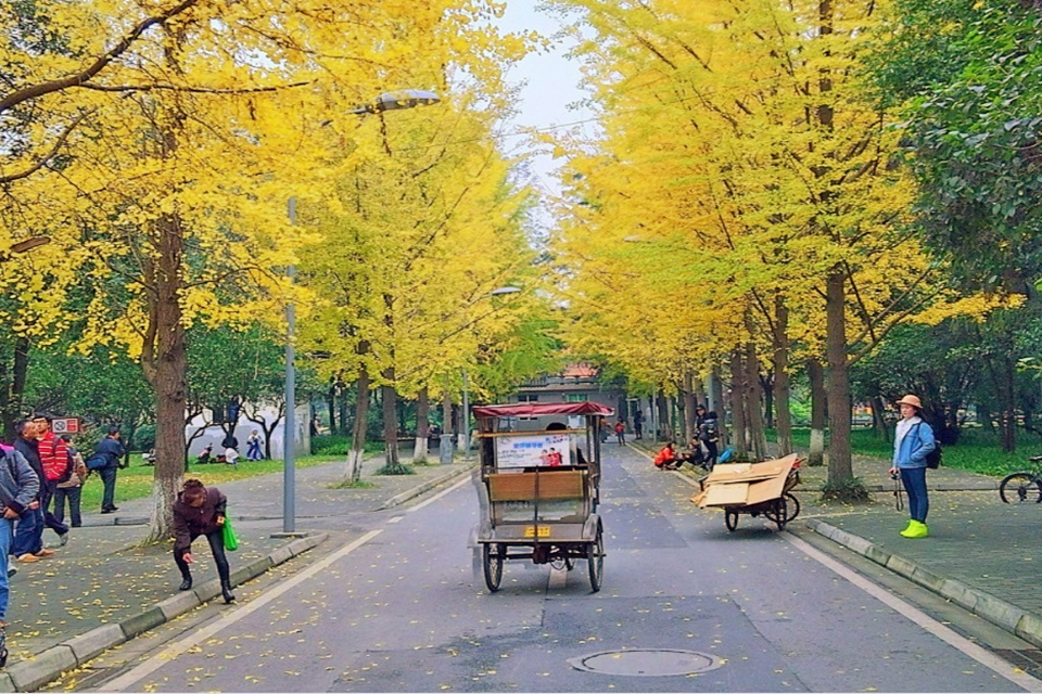 Taking-a-Rickshaw-in-Southern-China-1