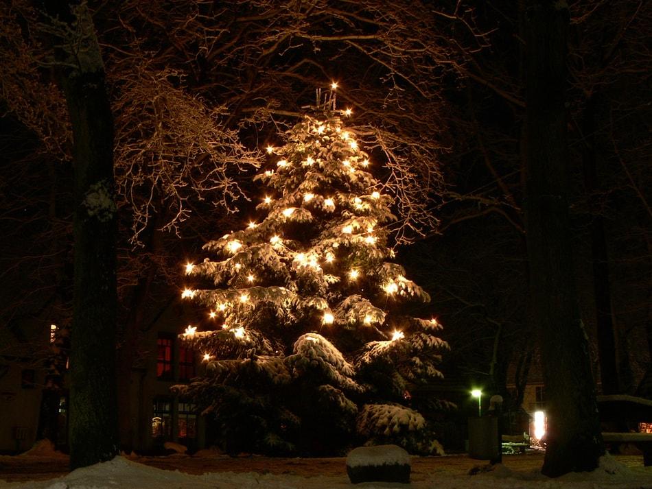 Christmas tree in Spanish