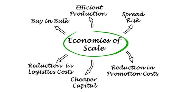 scale-economy_f-2