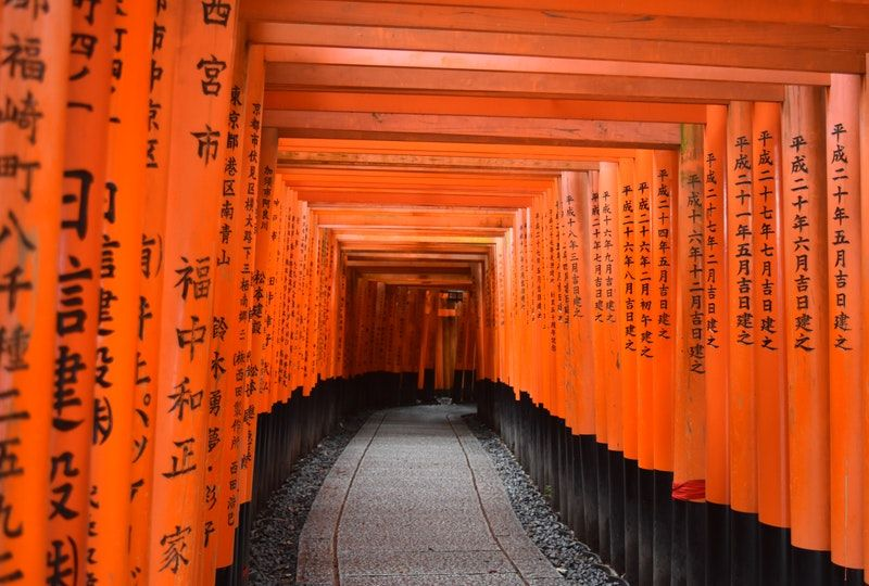 Japanese shrine gate tunnel