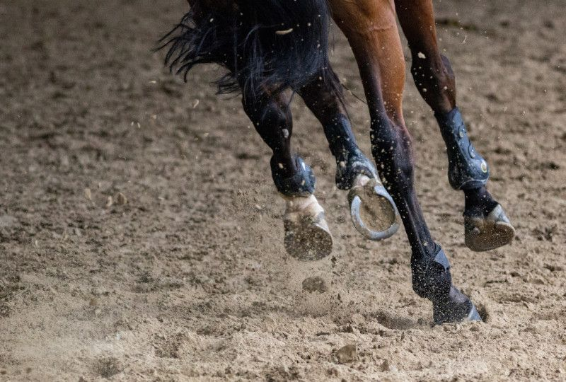 horse hooves galloping in the dirt