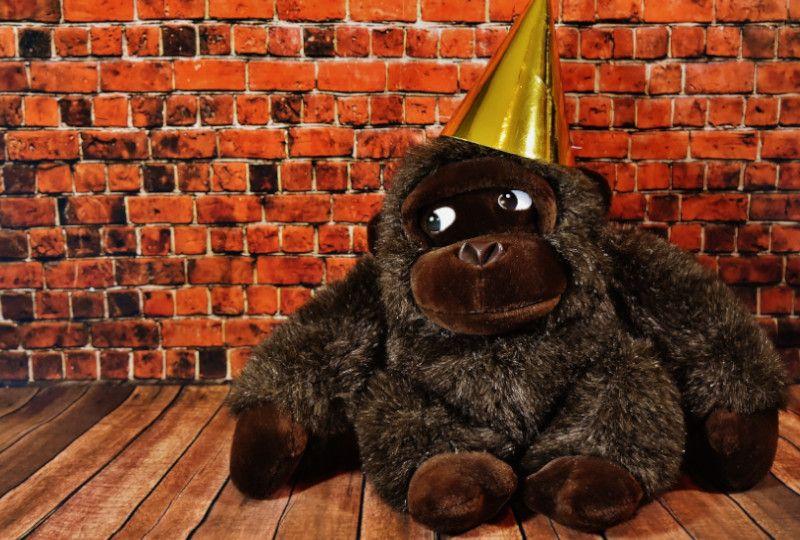 stuffed ape wearing a hat