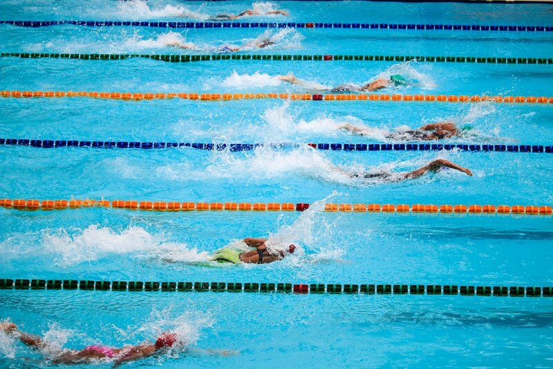 swimmers racing in a large pool