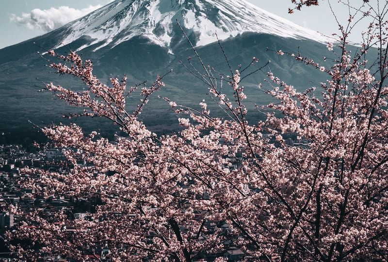 101 Basic Japanese Words and Basic Japanese Phrases for Travel in Japan