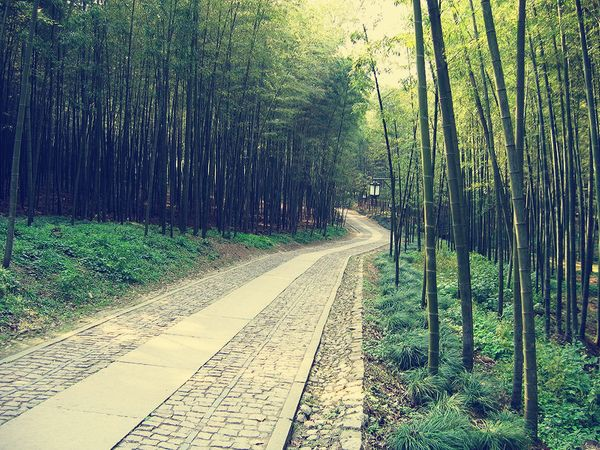 China Travel: 10 Trials and Tribulations of Trying to Learn Chinese